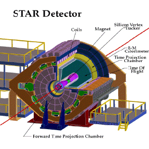 STAR Detector Schematic